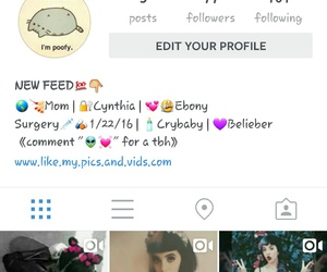 instagram, likemypics, and follow image