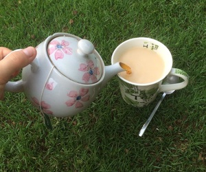 nature, tea, and green image