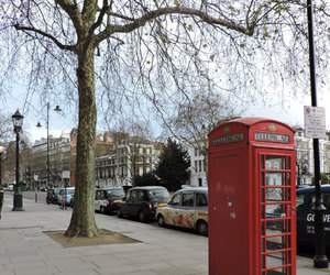 city, london, and nature image