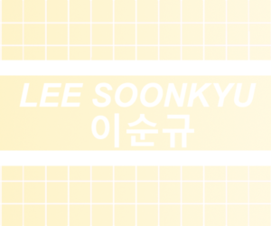 header, kpop, and snsd image