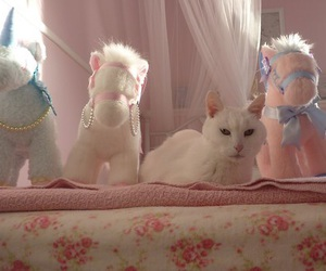 cat, unicorn, and animal image