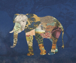 elephant, hipster, and animal image