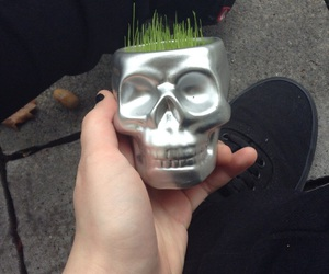 black, skull, and grass image