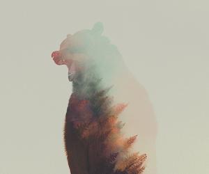 bear, animal, and art image
