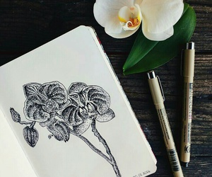 art, orchid, and stippling image