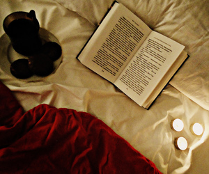 book, candles, and snacks image