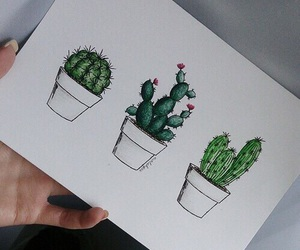 cactus, drawing, and art image