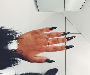 fur and nails image