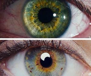 eyes, eye, and beautiful image