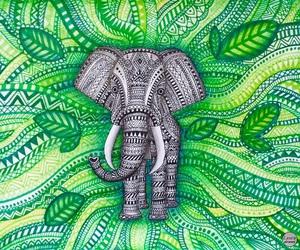 drawing, elephant, and zentangle image