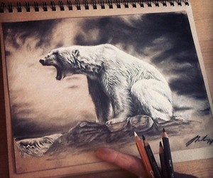 art, drawing, and Polar Bear image