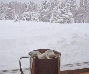 winter, snow, and hot ​chocolate image