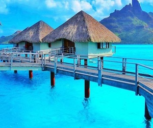 summer, bora bora, and paradise image