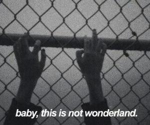 wonderland, grunge, and quote image