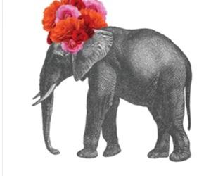 elephant and flowers image