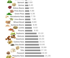 protein, vegan, and healthy image
