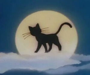 cat, anime, and sailor moon image