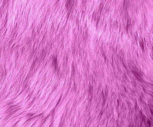 pink and fur image