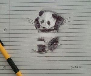 panda, art, and drawing image