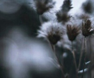 header, layout, and Harry Styles image