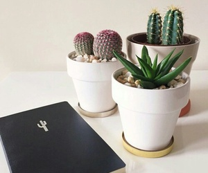 black, book, and cactus image