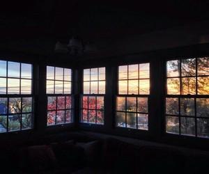 window, nature, and windows image