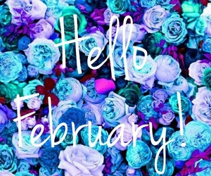 february, blue, and flowers image
