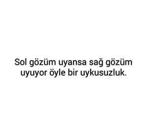 Turkish and türkçe sözler image