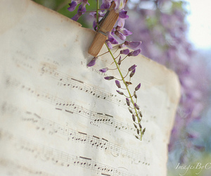 music, flowers, and note image