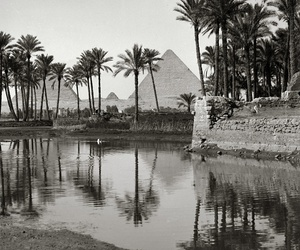 black and white, egypt, and nature image