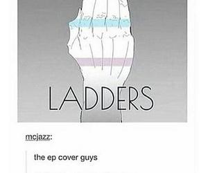 dan, ladders, and phil image