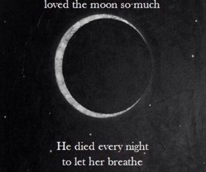 quote love sun moon image