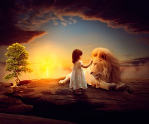 animals, lion, and sweet image