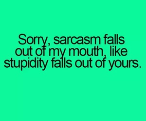 sarcasm, stupidity, and funny image