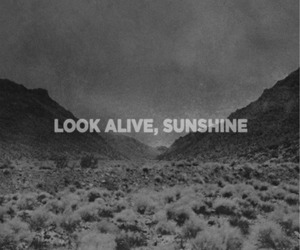 sunshine, my chemical romance, and quote image