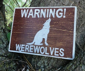 werewolf, warning, and aesthetic image