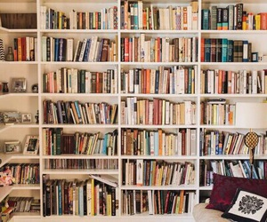 addict, bookcase, and lover image