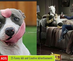 funny, funny ad, and funny pictures image