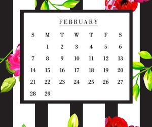background, wallpaper, and february image