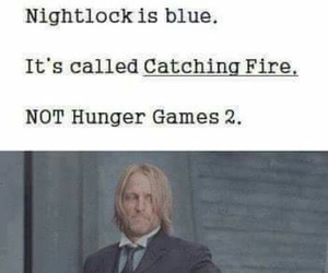 catching fire, haymitch, and hunger games image