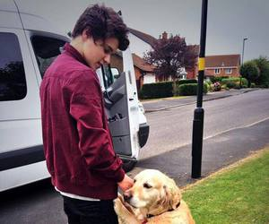 the vamps, bradley simpson, and dog image