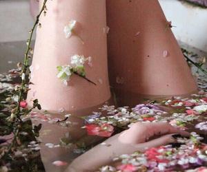 bath, petals, and photography image