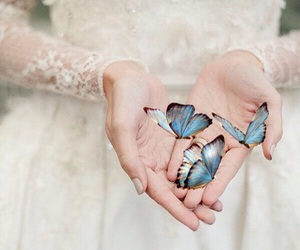 bridal, butterflies, and fantasy image