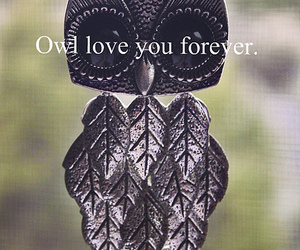 owl, love, and text image