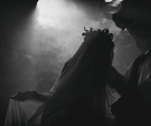 photography and veil image