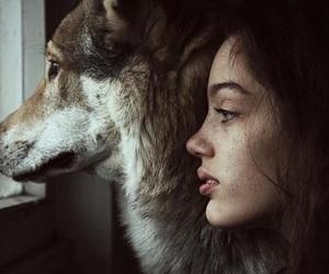 girl, wolf, and animal image
