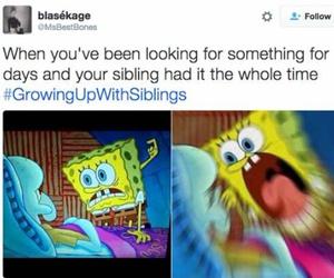 teenager post, hilarious, and siblings image