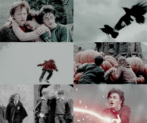 daniel radcliffe, deathly hallows, and emma watson image