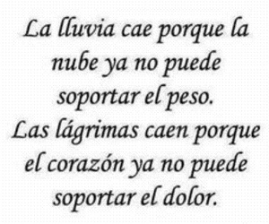lluvia, frases, and pain image