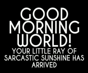 sunshine, sarcasm, and quotes image